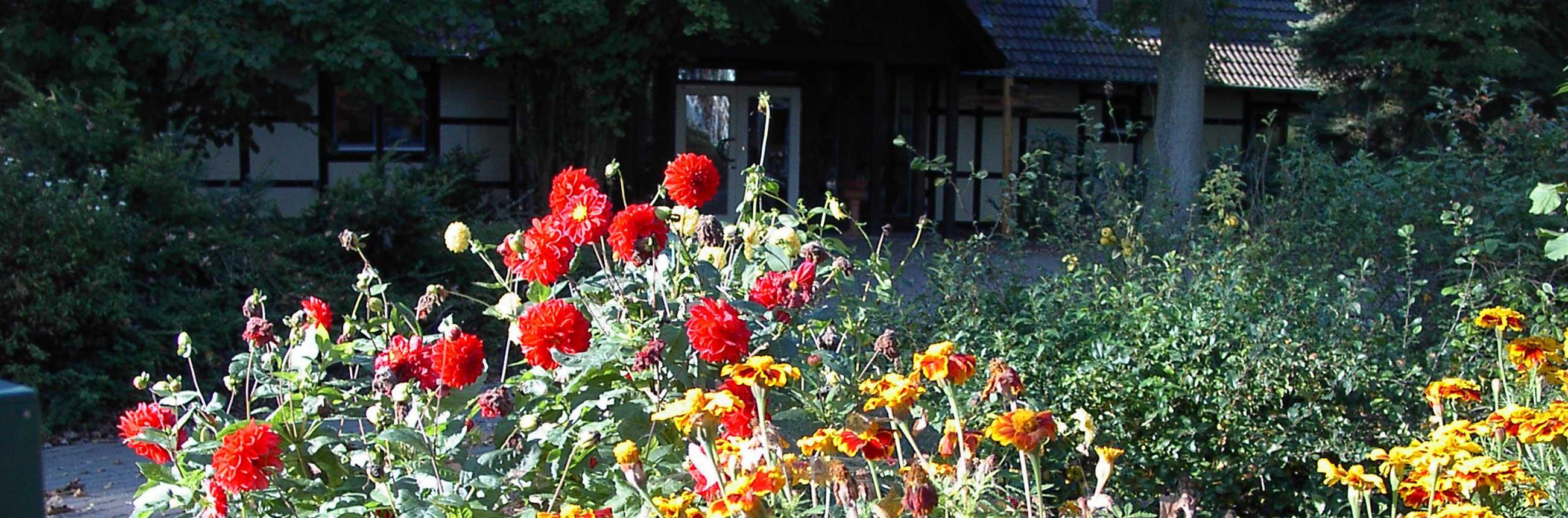 Ellernhof - die letzten Blüten