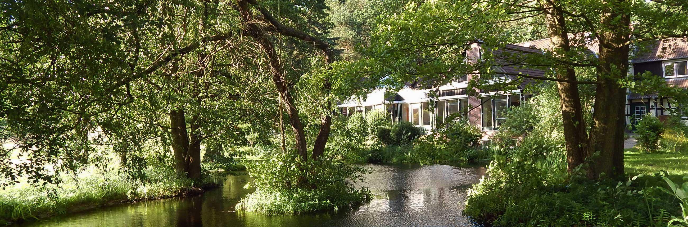 Ellernhof - Teich